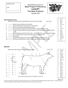 Beef Sample Test Level 1 (word)