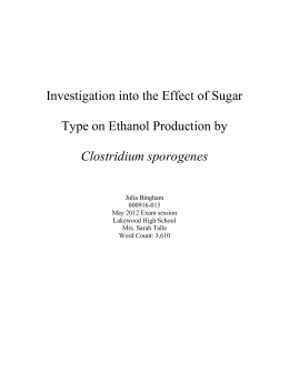 Effect of Sugar on Ethanol Production by C. sporogenes