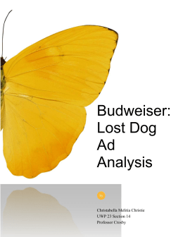 Budweiser: Lost Dog Ad Analysis