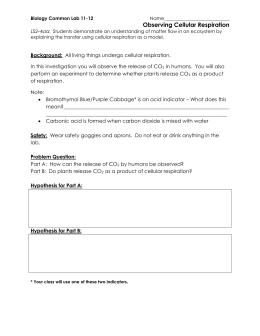 botany lab report on cellular respiration Ap biology cellular respiration lab report uploaded by patrick related interests cellular respiration  patrick mccrystal cellular respiration: from o2 to co2 purpose: this lab provided insight to the process of cellular respiration  in the lab, co2 made during cellular respiration was removed by the potassium hydroxide (koh) and.