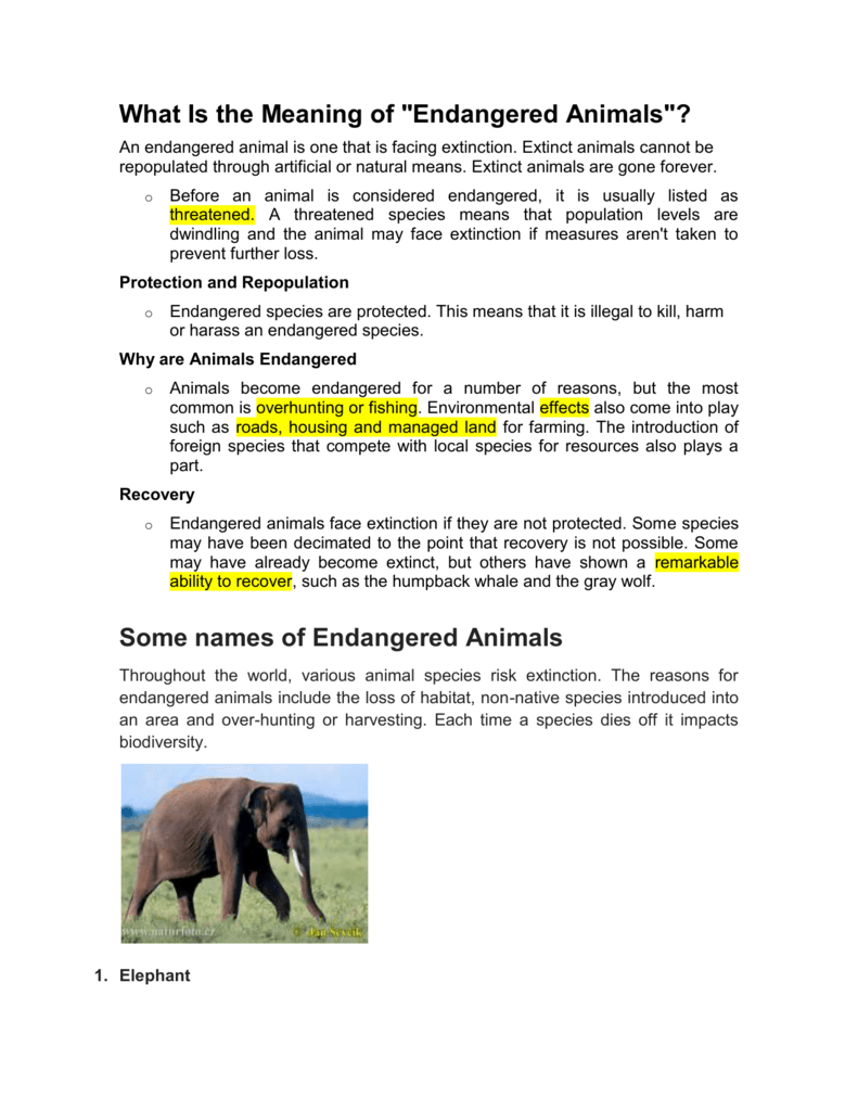 """what is the meaning of """"endangered animals""""?"""