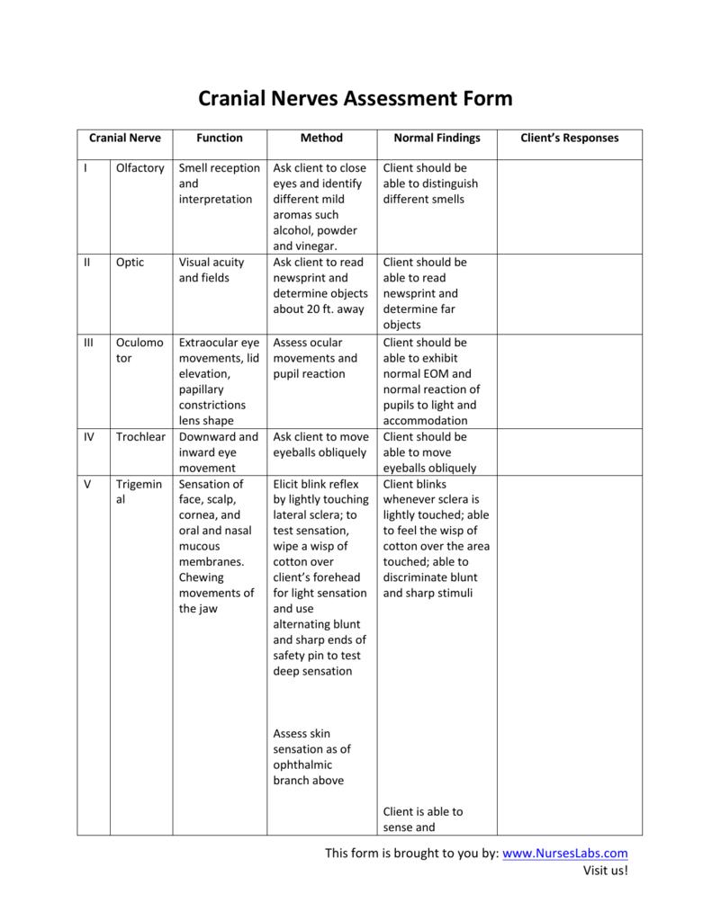 cranial nerves assessment form