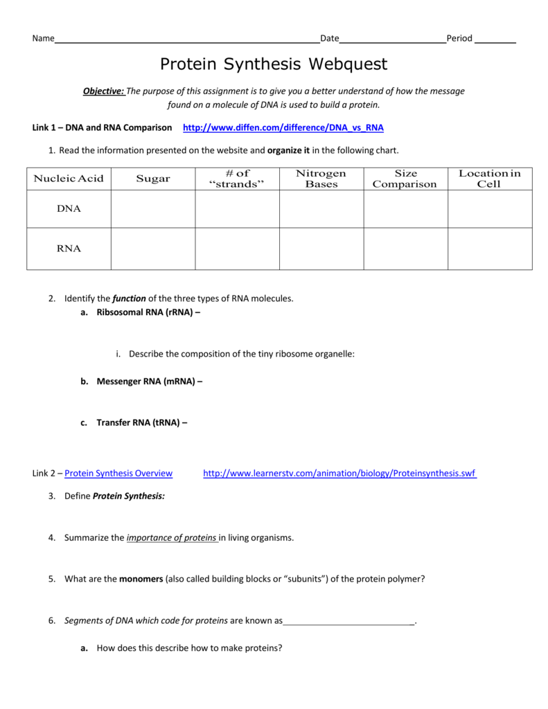 Protein-synthesis-worksheet-answers- & Agencede Com Wp Content ...