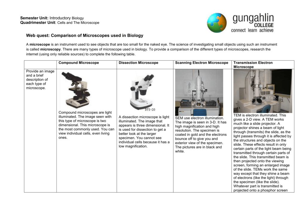 different types of microscopes used to study cells and how they are different