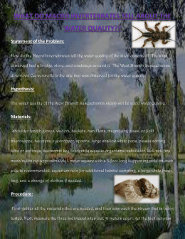 What do Macro Invertebrates tell about the Water Quality??