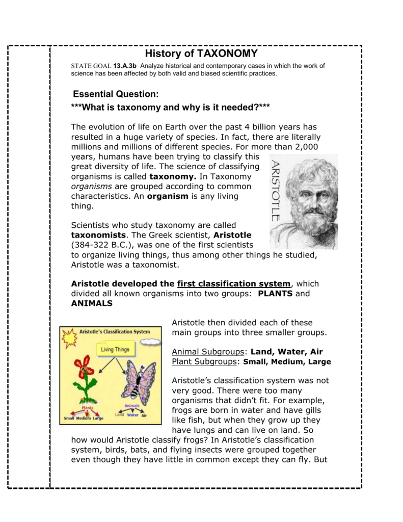 worksheet History Of Taxonomy Worksheet Answers history of classification