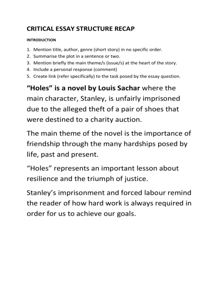 Justice in holes theme essay write a career research essay