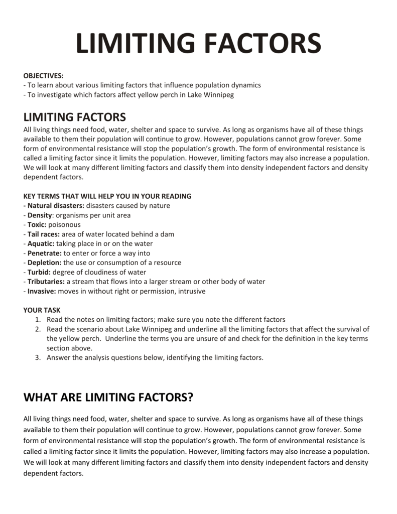 A Reading And Worksheet Everett Public Schools