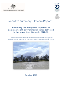 Executive Summary - Interim Report