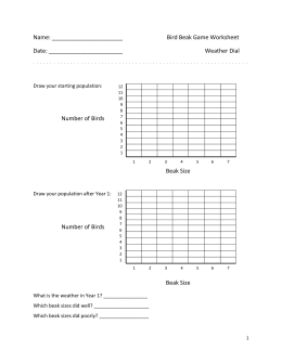 bird beak adaptations worksheet the best and most comprehensive worksheets. Black Bedroom Furniture Sets. Home Design Ideas