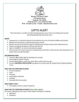 Lepto Information - Borash Veterinary Clinic