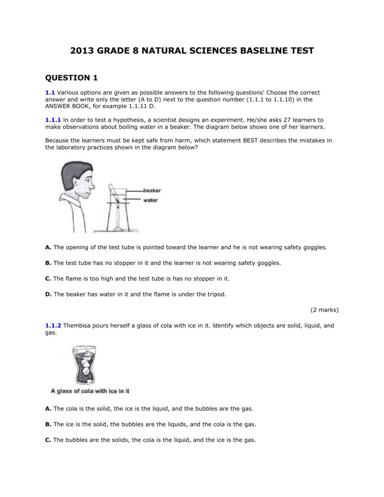 Natural Science Exam Papers Grade 8 idea gallery