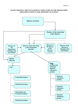 chart showing the management structure of the programme