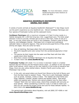 AQUATICA FACT SHEET Page of 1 Media: For more information