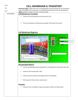 Cell Reproduction - Guided Notes