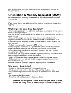 O&M Professional Flyer – Word - Association for Education and