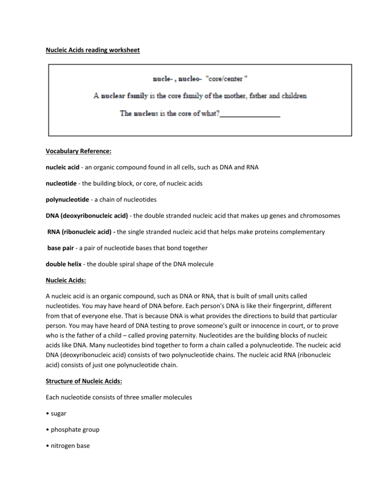 nucleic acids worksheets Template – Acids Worksheet