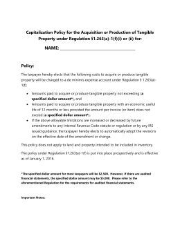 Sample Capitalization Policy