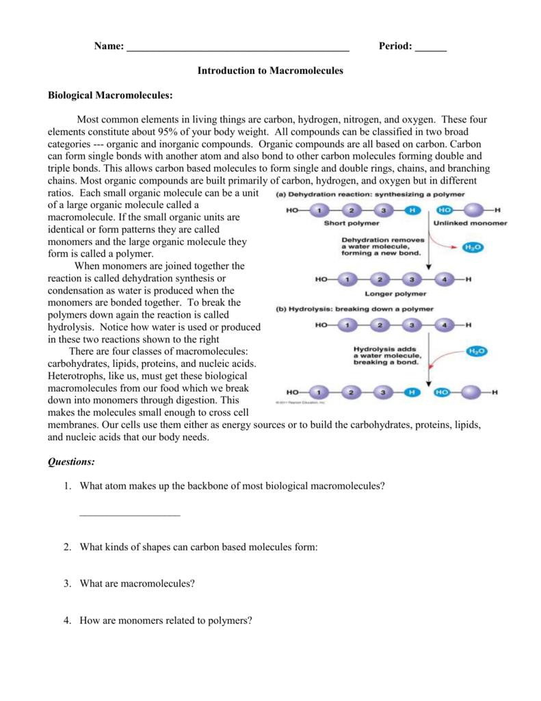 Bio Macromolecules Worksheetc