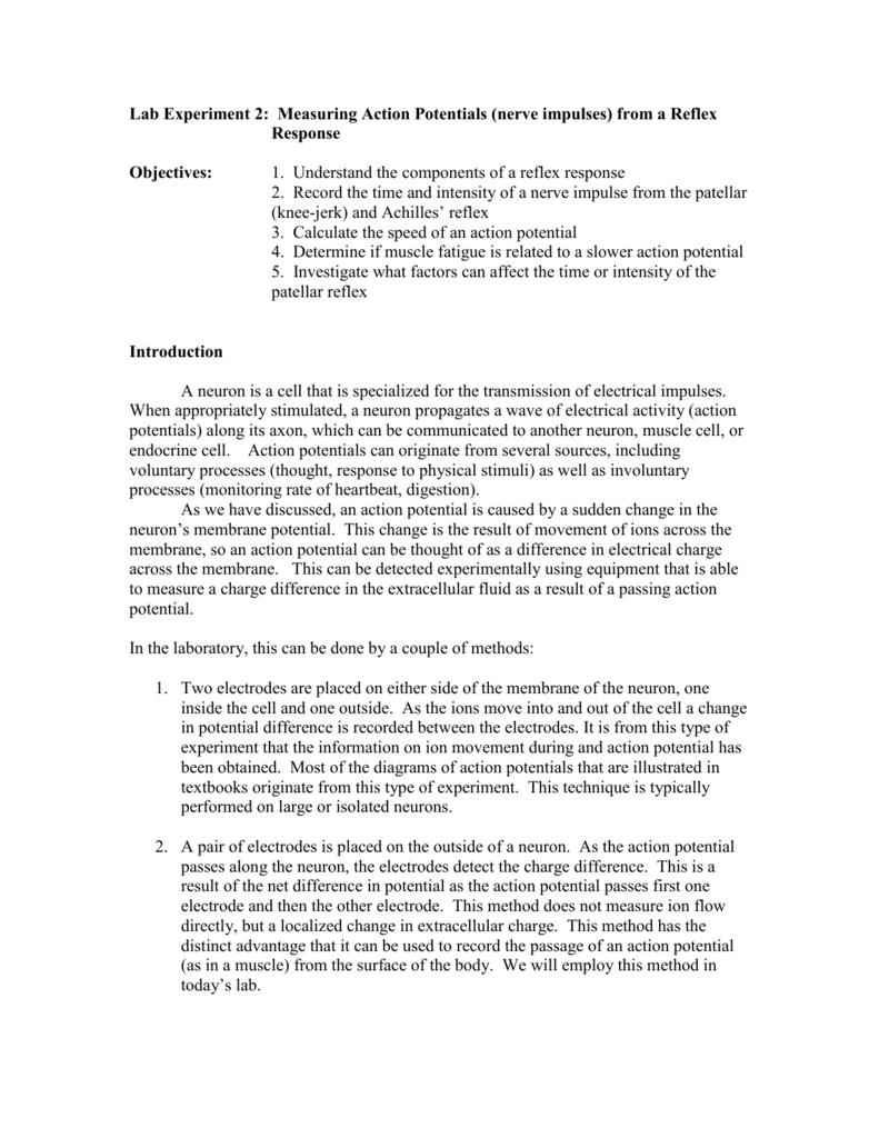 Lab 2 – Measuring Action Potentials via Reflex