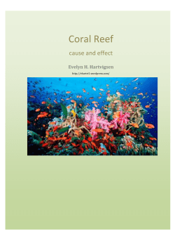 Coral Reef Alliance