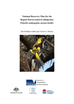 National Recovery Plan for the Regent Parrot (eastern subspecies