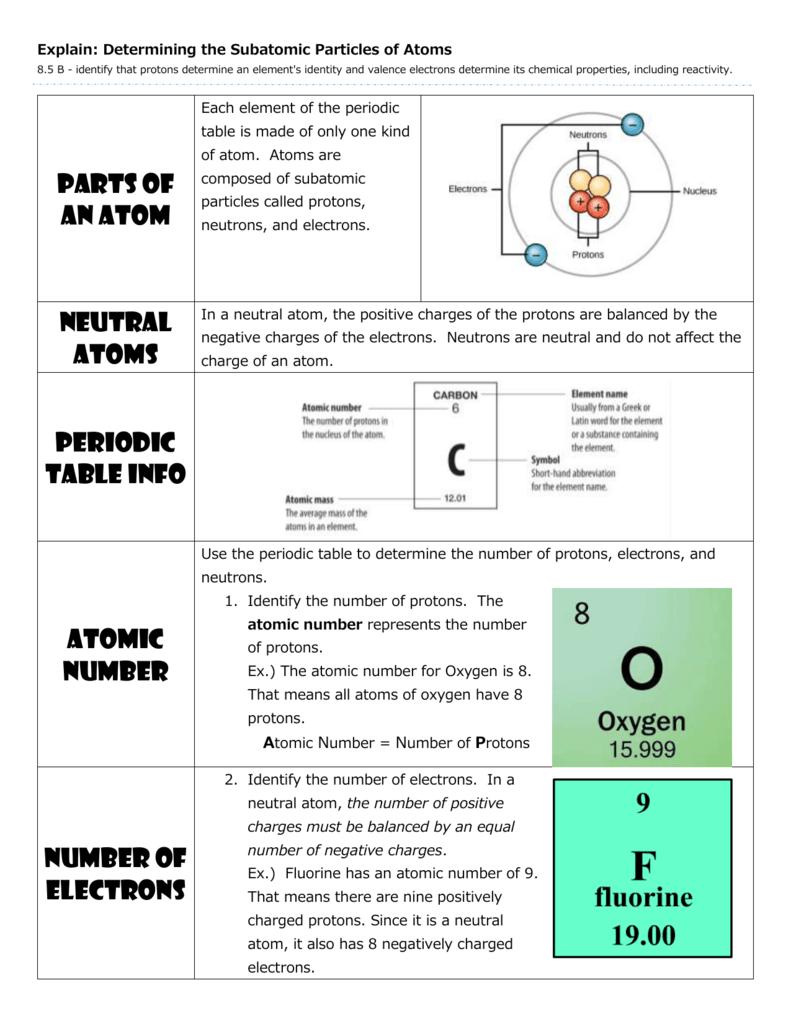 Explain Ape Man Notes Teacher Page