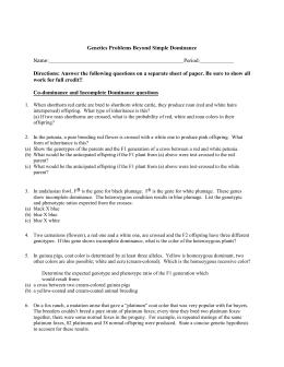 Genetic problems  worksheet