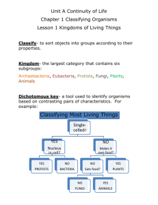 Classification of Life Worksheet