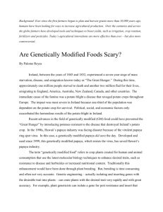 File are genetically modified foods scary