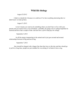 New Kenneth Cole #25296 13 M black (3773)
