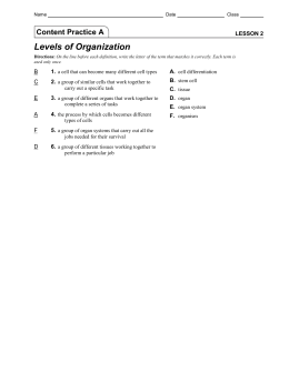 levels-of-organization-content-practice-A-B with