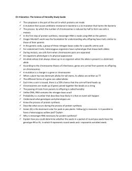 genetics terms rh studylib net Plate Tectonics Study Guide Answers Section 14 1 Human Heredity Answer Key