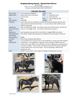 for sale or lease - Spanish Barb Breeders Association