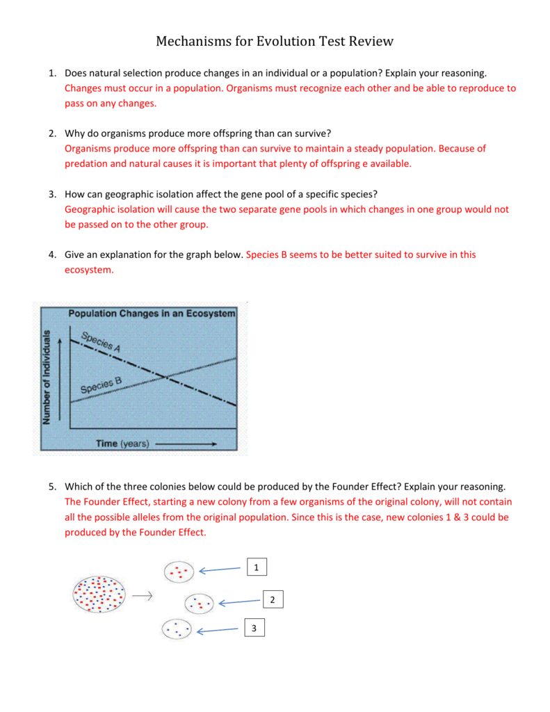 Mechanisms For Evolution Test Review With Answers