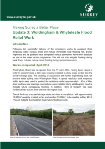 Whyteleafe Flood Relief Works