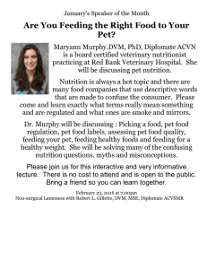 Are You Feeding the Right Food to Your Pet?