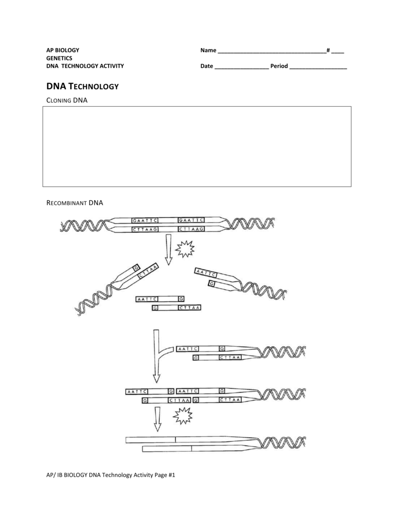 Uncategorized Dna Technology Worksheet dna technology dynamic science