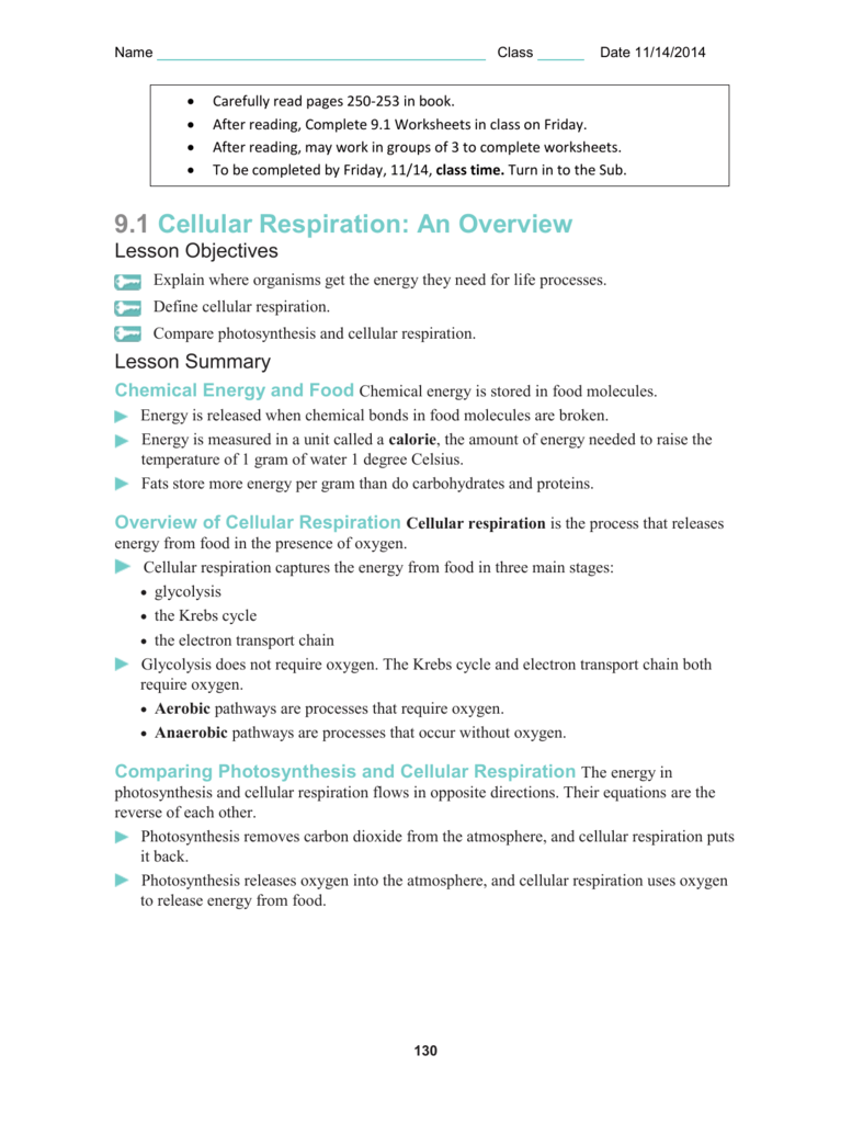 Comparing Photosynthesis and Cellular Respiration – Cellular Respiration Worksheets