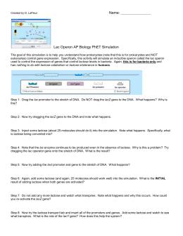 25 Phet Gene Expression Basics Worksheet - Worksheet ...