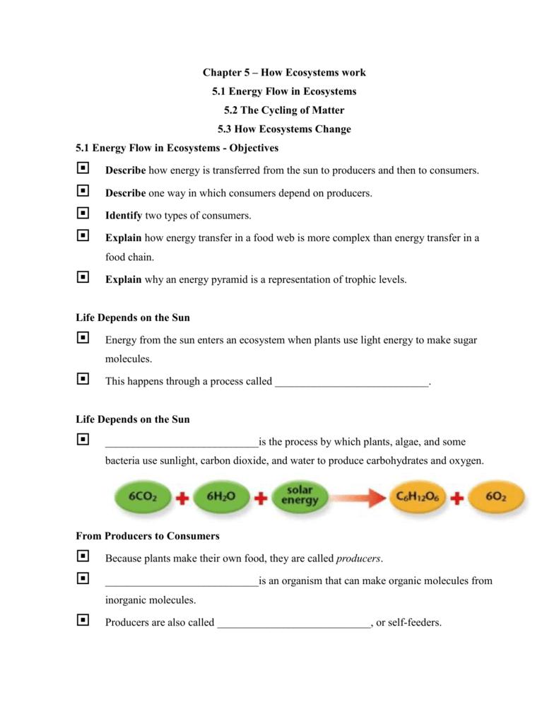 Worksheets Energy Flow In Ecosystems Worksheet chapter 5 how ecosystems work 1 energy flow in ecosystems
