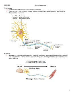 campbells ap biology chapter 48 notes Campbell biology chapter 48 notes/flashcards learn with flashcards, games, and more — for free.