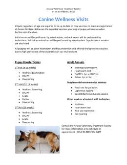 Canine-Wellness-Packages