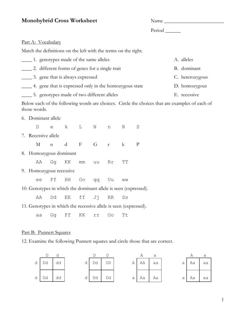 Part C: Monohybrid Cross Problems