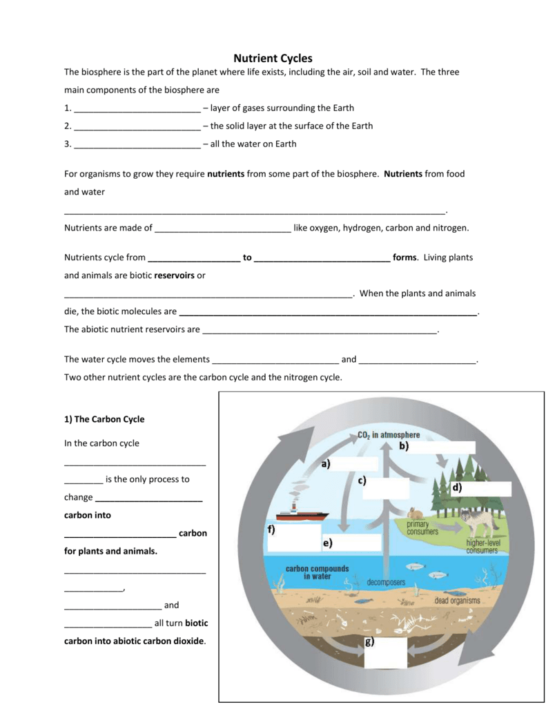worksheet the carbon cycle worksheet grass fedjp worksheet study site. Black Bedroom Furniture Sets. Home Design Ideas