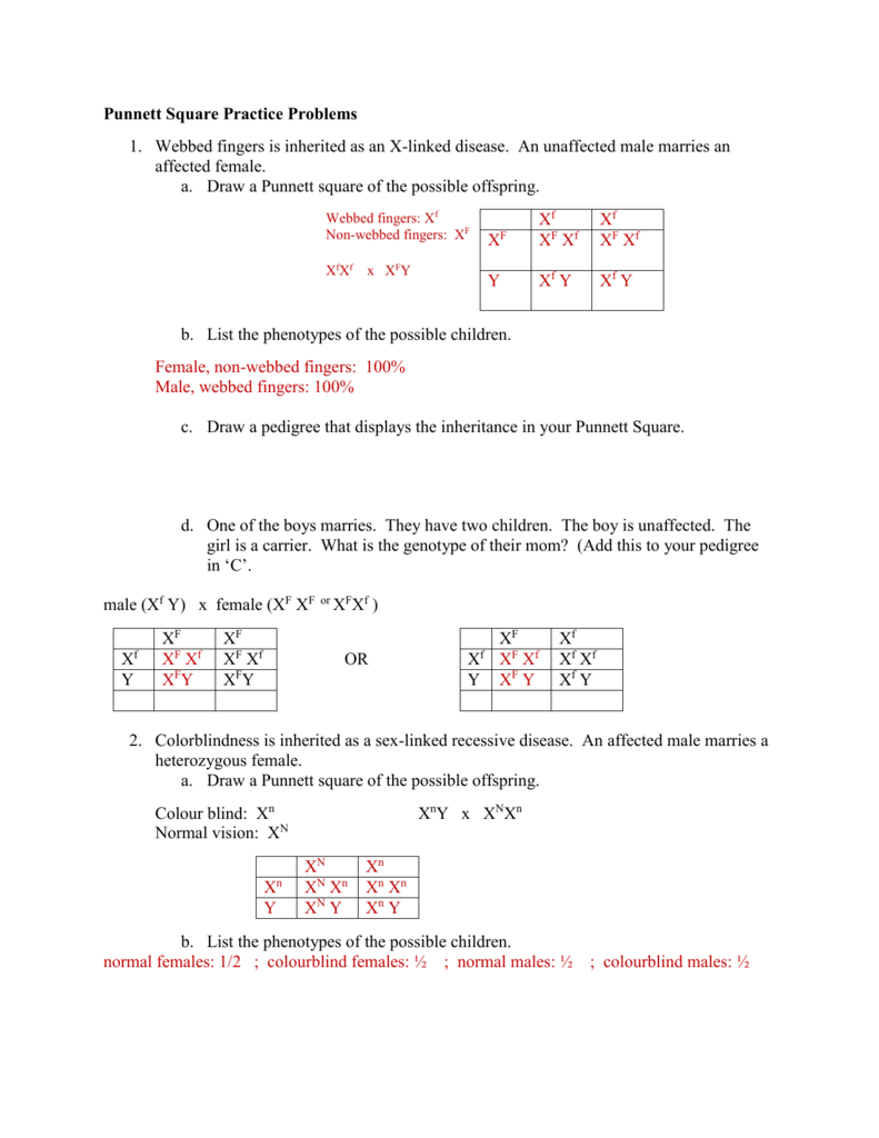 worksheet Punnett Square Problems Worksheet sex linked worksheet answers