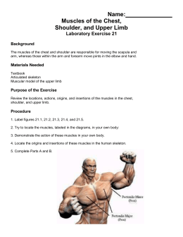 Name: Muscles of the Chest, Shoulder, and Upper Limb Laboratory