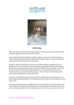 Lilly`s blog