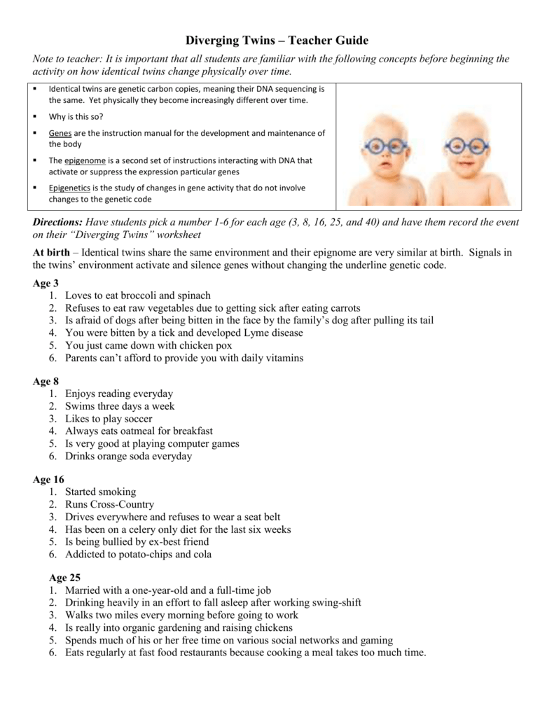 Worksheet Student Handouts Diverging Twins – Gene Expression Worksheet