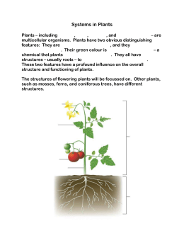 4.1 Systems in Plants student copy